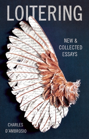 New & Collected Essays