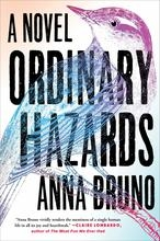 Ordinary Hazards book cover