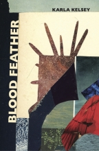 Blood Feather book cover