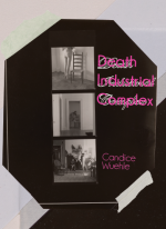 Death Industrial Complex book cover