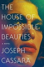 The House of Impossible Beauties book cover