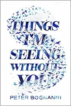 Things I'm Seeing Without You book cover