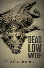 Dead Low Water book cover