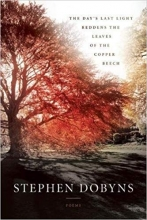 The Day's Last Light Reddens the Leaves of the Copper Beech book cover