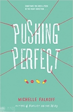 Pushing Perfect book cover