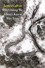 Everything We Always Knew Was True book cover