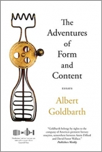 The Adventures of Form and Content book cover