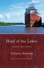 Head of the Lakes book cover