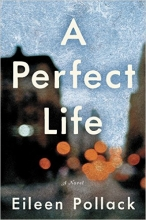 A Perfect Life book cover