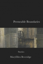 Permeable Boundaries book cover