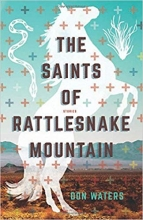 The Saints of Rattlesnake Mountain book cover